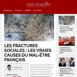 Les fractures sociales : les vraies causes du mal-être français