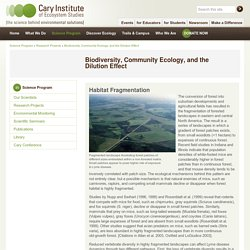 Cary Institute of Ecosystem Studies