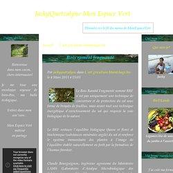 Bois raméal fragmenté - JackyQuetzalyne Mon Espace Vert