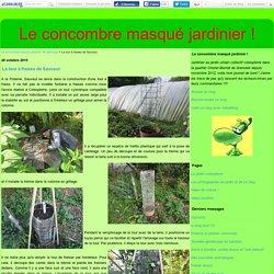 La tour à fraises de Sauveur - Le concombre masqué jardinier !