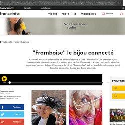 """""""Framboise"""" le bijou connecté"""