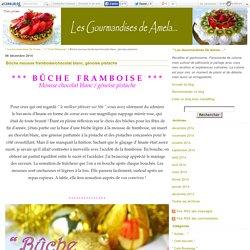 Bûche mousse framboise/chocolat blanc, génoise pistache