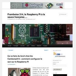 Ça va faire du bruit chez les framboise314 : comment configurer le son sur le Raspberry Pi