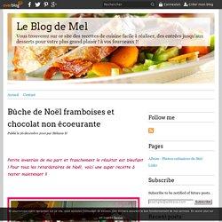 Bûche de Noël framboises et chocolat non écoeurante - Le Blog de Mel