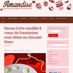 Panna Cotta vanillée & coeur de framboises sous dôme au chocolat blanc