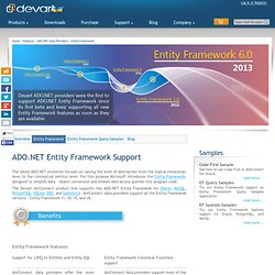 Entity Framework Support