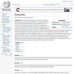 Framsticks