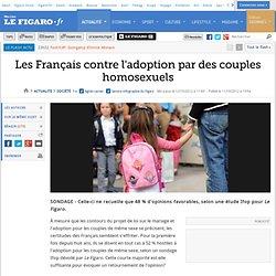 France : Les Français contre l'adoption par des couples homosexuels