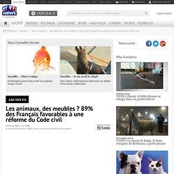 Les animaux, des meubles ? 89% des Français favorables à une réforme du Code civil - Société