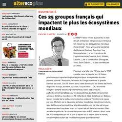 Ces 25 groupes français qui impactent le plus les écosystèmes mondiaux
