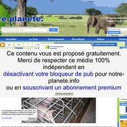 90% des Français sont opposés à l'élevage intensif présent à 80% en France