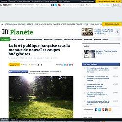 La forêt publique française sous la menace de nouvelles coupes budgétaires