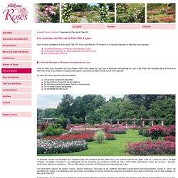 Société Française des Roses - Le Parc de la Tête d'Or comprend trois roseraies qui méritent une visite