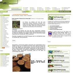 Forêt française et devenir de la filière Bois