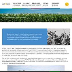 La filière française de production de semences de maïs, ses missions - FNPSMS - Maize in France