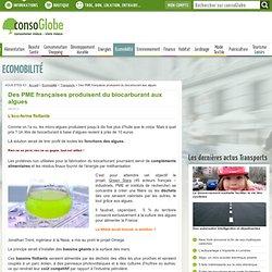 Des PME françaises produisent du biocarburant aux algues Page 4 de 4