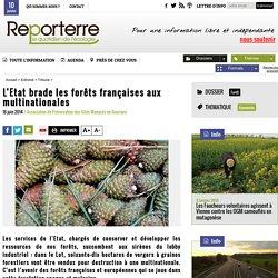 L'Etat brade les forêts françaises aux multinationales