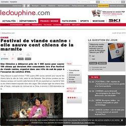 Festival de viande canine : elle sauve cent chiens de la marmite