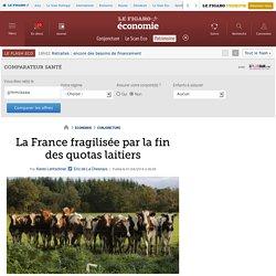 La France fragilisée par la fin des quotas laitiers