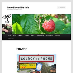 France | incredible edible info