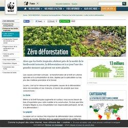 Lutter contre la déforestation