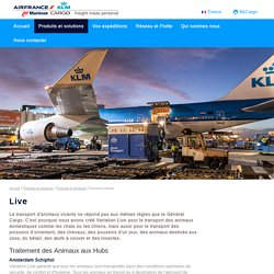 AIR FRANCE KLM MARTINAIR Cargo - Live