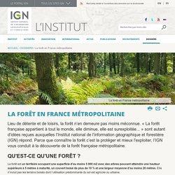 La forêt en France métropolitaine