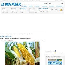 OGM : le maïs de Monsanto n'est plus interdit