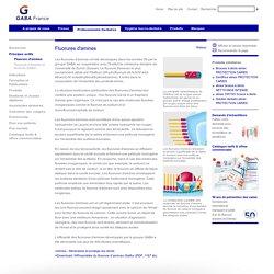 GABA France - Principes actifs - Fluorures d'amines
