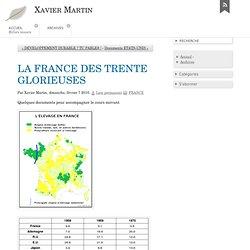 LA FRANCE DES TRENTE GLORIEUSES - Xavier Martin