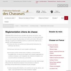 Règlementation chiens de chasse - Fédération nationale des chasseurs de FranceFédération nationale des chasseurs de France