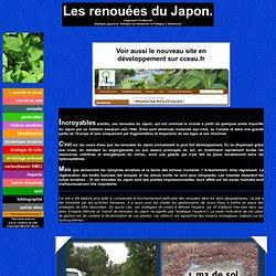Site francophone dédié aux renouées du Japon, plantes invasives, au bord des rivières.