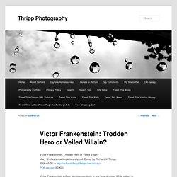 Victor Frankenstein: Trodden Hero or Veiled Villain?