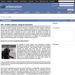 SVT : Frédéric Labaune : Eloge du naturaliste