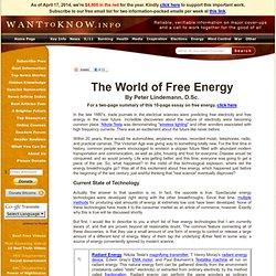Free Energy - Iceweasel