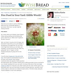 Free food in your yard - edible weeds!