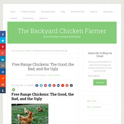 Free Range Chickens: The Good, the Bad, and the Ugly