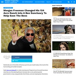Morgan Freeman Changed His 124 Acre Ranch Into A Bee Sanctuary To Help Save The Bees