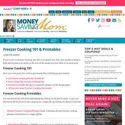 Freezer Cooking 101 & Printables : Money Saving Mom®