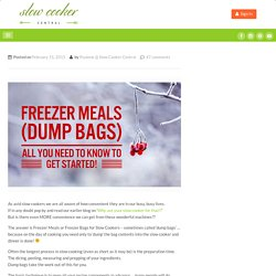 Freezer Meals for Slow Cookers