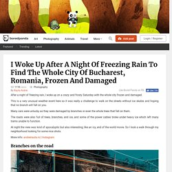 I Woke Up After A Night Of Freezing Rain To Find The Whole City Of Bucharest, Romania, Frozen And Damaged