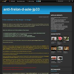 Frelon asiatique au Pays Basque ! Ca bouge ! - Le blog de JP33