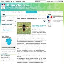 DIRECCTE LIMOUSIN 28/06/13 Frelon asiatique : un risque pour tous
