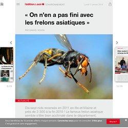 «On n'en a pas fini avec les frelons asiatiques» - Edition du soir Ouest France - 11/01/2016