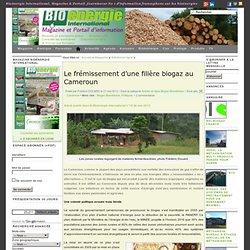 Le frémissement d'une filière biogaz au Cameroun