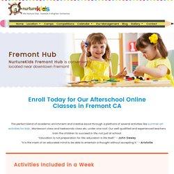 Fremont CA Online Afterschool Kids Programs Art Lessons