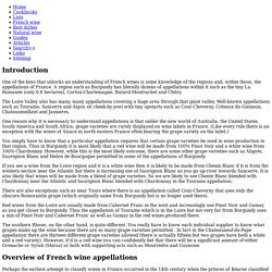 French Wine Appellations Overview