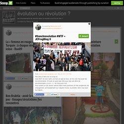 #frenchrevolution #WTF « JCFrogBlog II