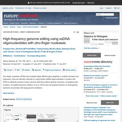 High-frequency genome editing using ssDNA oligonucleotides with zinc-finger nucleases : Nature Methods : Nature Research