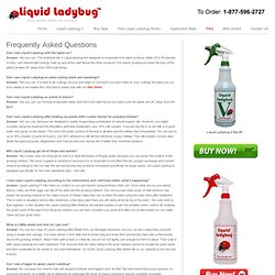 Frequently Asked Questions | Liquid Ladybug Spider Mite Killer
